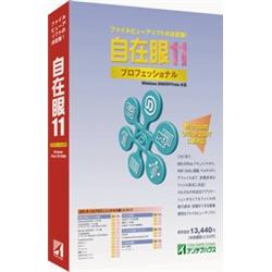 自在眼11プロフェッショナルfor Windows JAN11(FMDIS00655)