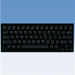 Happy Hacking Keyboard Lite2 英語配列/黒/USB PD-KB200B/U(FMDI008193)